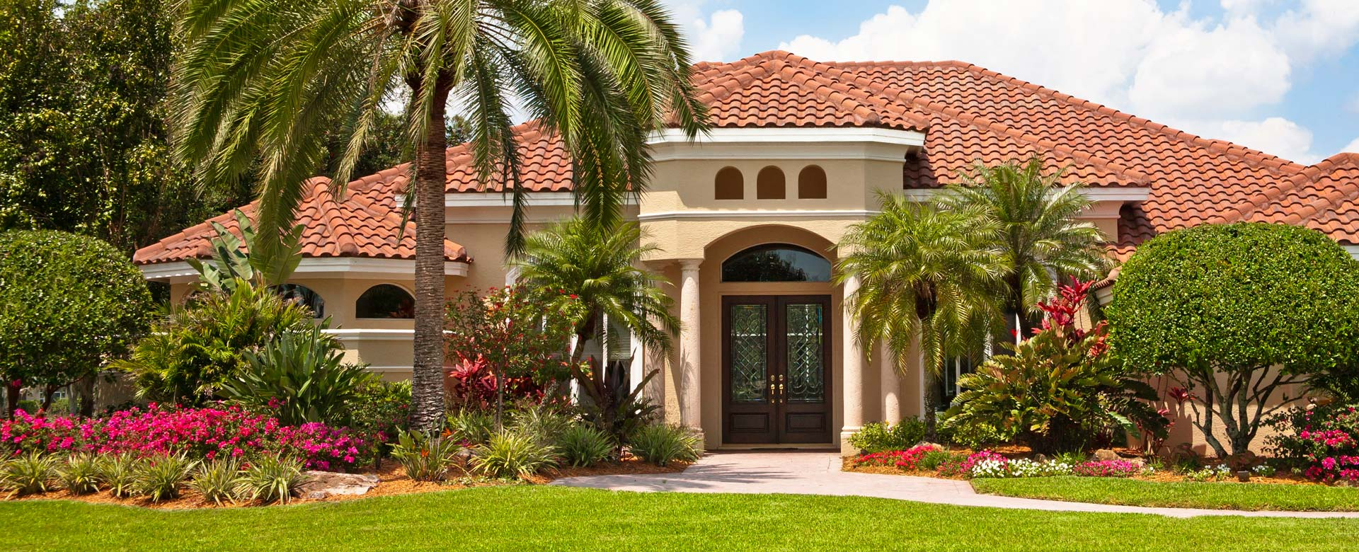 roof cleaning and house washing in davie softwash nation